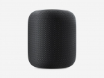 Apple Homepod Space Grey schwarz